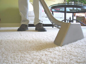 Fastest and Best Carpet Cleaner In KW