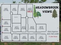 Acreage Lots for Sale in Meadowbrook Views at Gull Lake