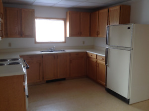 Nice large 1 bedroom apartment