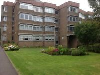 Studio flat to let Shawlands