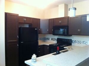 2 bedroom and 2 bathroom with dan in Windermere