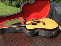Acoustic guitar with hardcase.