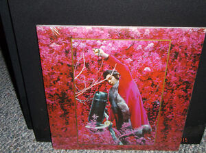 CAPTAIN BEEFHEART AND THE MAGIC BAND albums