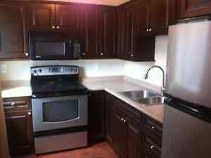 Ground Level Suite 1 Bed 1 Bath - Utilities/Internet included
