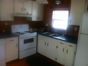 Beautiful renovated mini home for rent quiet area pets allowed