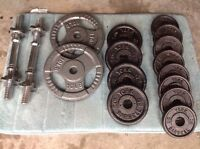 Weight plates and dumbbell bar