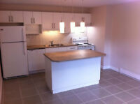 1 bedroom apartment downtown Nanaimo available immediately