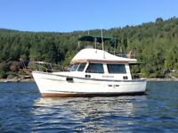 30' Campion Trawler