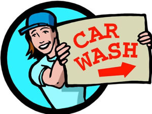 PRO CAR CLEANING / SHAMPOOING, DETAIL, WAXING, MOBILE