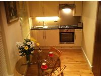 Lovely Studio Flat to rent per day. Short let , Holiday let