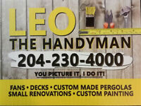 A perfect HandyMan for any job inside and outside !!!!