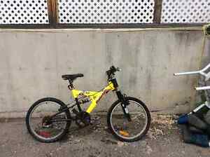 Kids Raleigh mountain bike