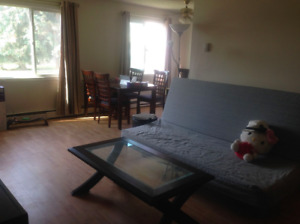 **Nice one-bedroom furnished CONDO in the west