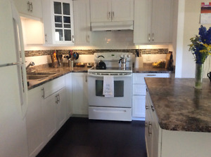 Custom professionally renovated mobile for sale