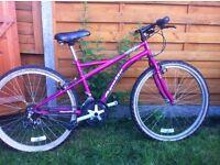 Ladies or girls bike