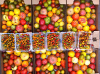 seeking part time produce workers for fruit & vegetable packing