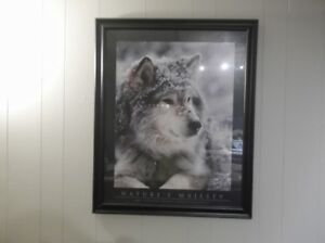 "FRAMED WOLF PRINT   33"" BY 27"""