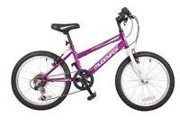 """Muddyfox girls 24"""" mountain bike synergy24 new"""