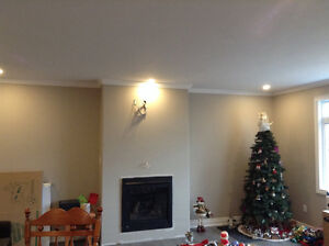 Professional Painters (Home, Office, Interior and Exterior)
