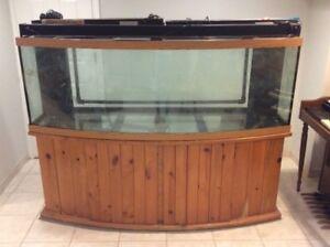 """6 foot """"All Glass Aquarium"""""""