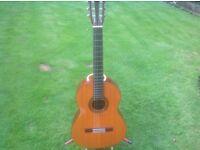 Classical Guitar Antoria Vintage