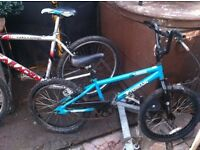 Kids BMX