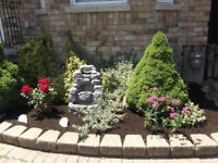 Need help with garden projects ?