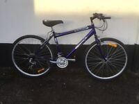 GENTS EMMELLE MOUNTAIN BIKE
