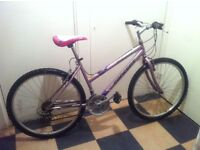 Adults MOUNTAIN BIKE (Good Working Order)
