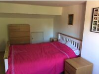Double Large double bedroom with ensuite in great location
