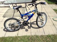 Small CCM bicycle