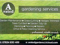 Garden Maintenance Gardening Service Gardener