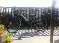 Mountain Bike - Mens - CCM - $125obo