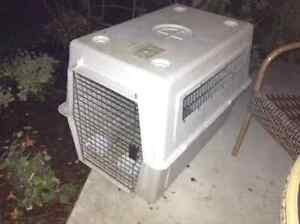 Medium sized plastic dog crate for sale London Ontario image 1