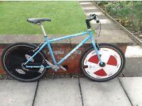 Single Speed Kona (converted to polo bike)