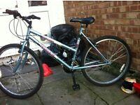 Ladies terrain bike