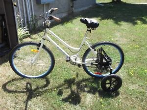 STABLE ADULT BICYCLE