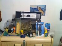 FISH SETUP NEED GONE QUICK