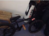 Custom BMX, cult United, odyssey bsd