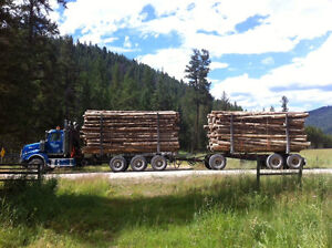 Western Star short and long logger