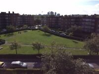 Double room in a 3 bed flat in Chiswick