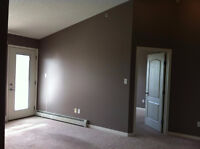 Great condo in Clareview, perfect for commuters, ready now