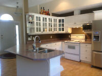 Full kitchen counters and cupboards