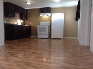 Renovated and freshly painted DOG FRIENDLY