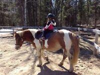 Kids love horseback riding camp!!!