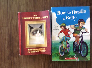 Grumpy cat and how to handle a bully books
