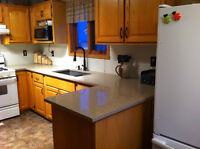 Custom Granite and Quartz Countertops