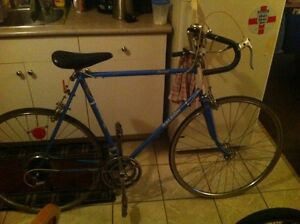 Raleigh Record for sale 150$ OBO
