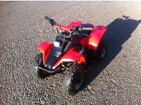 Kazuma meerkat 50cc quad with electric start