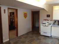Spacious, well-lit 2 BR Basement Suite close to U of A
